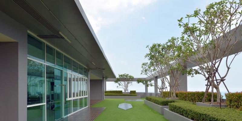 Zelene strechy v meste